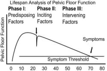 Lifetime Analysis Pelvic Floor Function