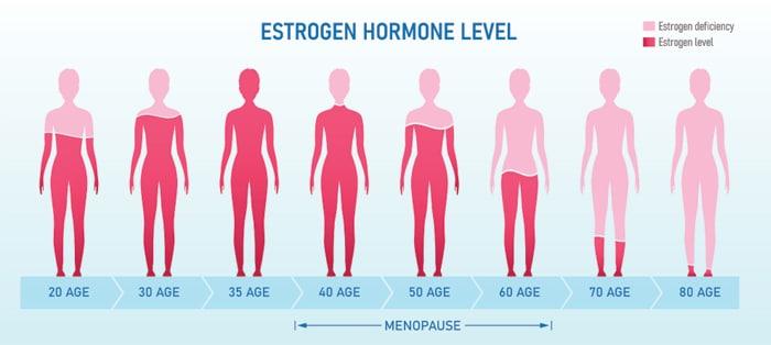 Menopause & Declining Oestrogen Levels