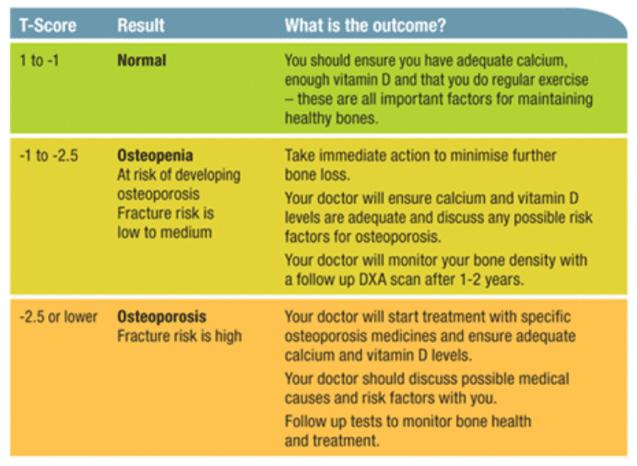 Osteoporosis Diagram